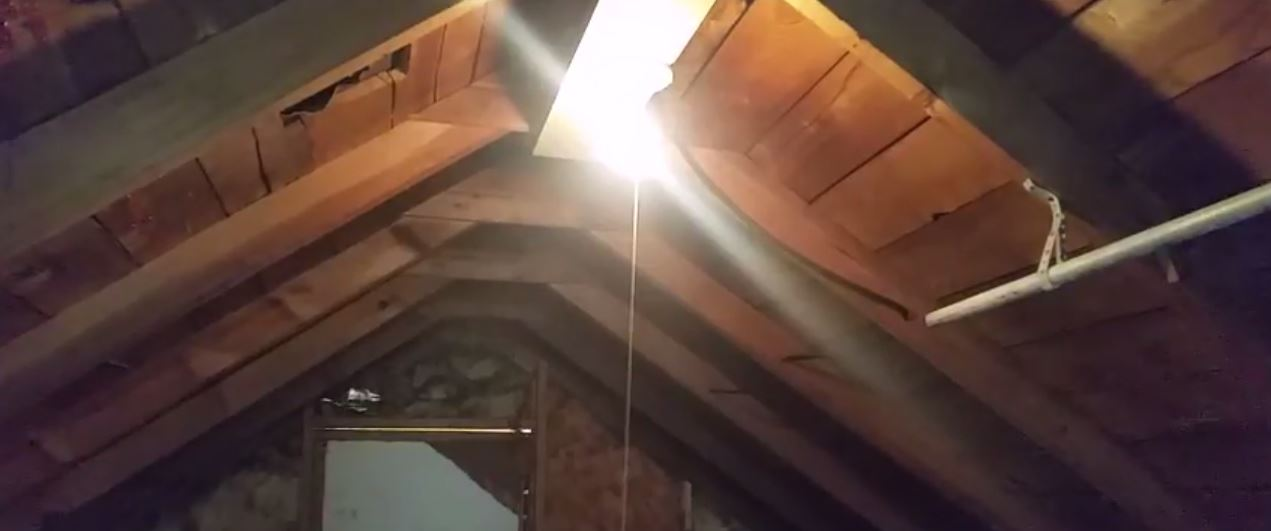Noises In Attic But No Droppings